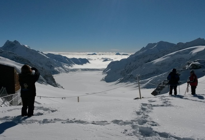 Aletsch Glacier, from Jungfraujoch